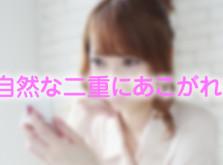 shizennafutae760